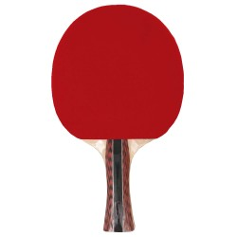 Pala de Ping Pong Cup TOP